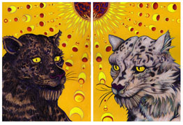 Black Leopard and Snow Leopard Under the Solar Eclipse